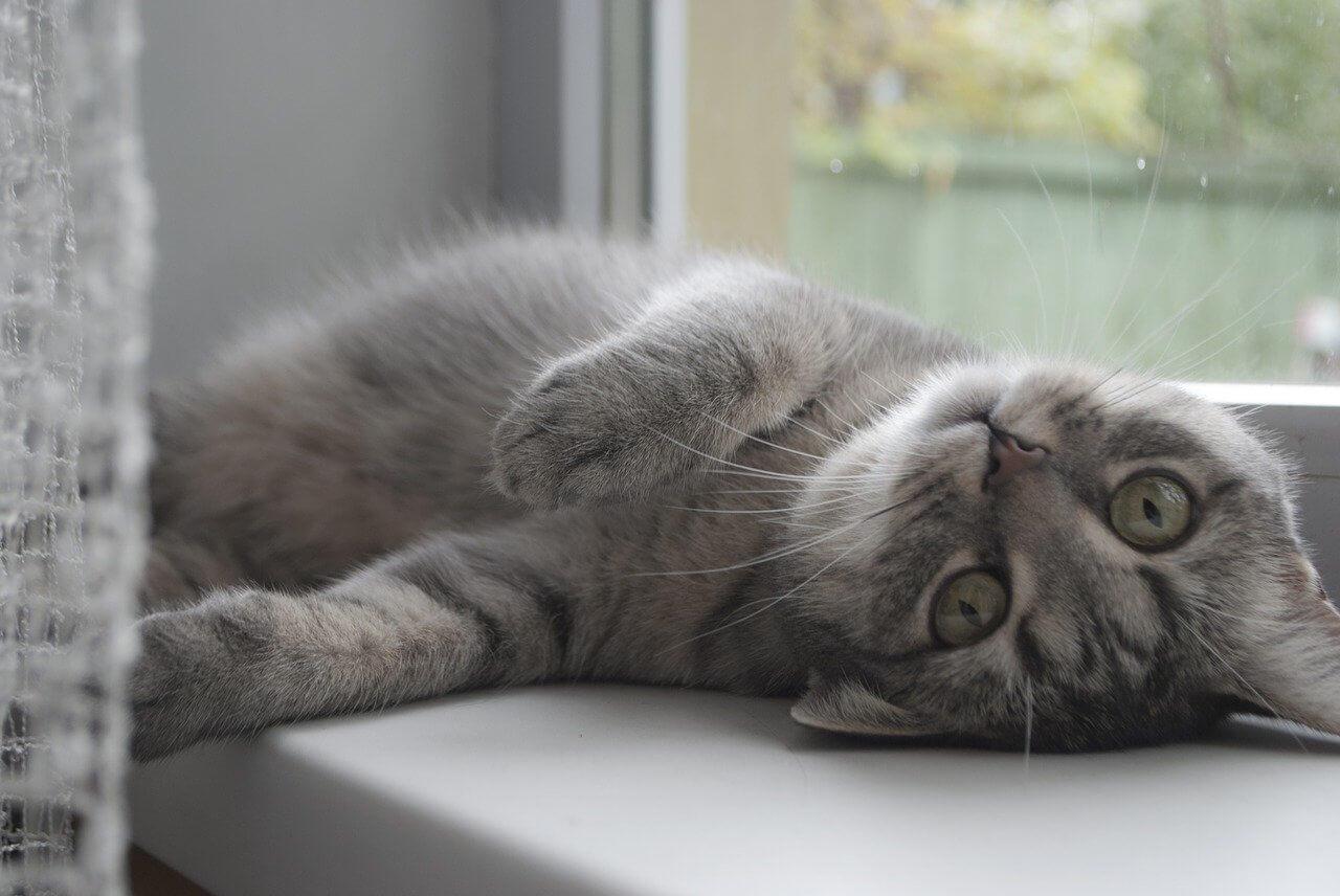 在宅勤務で怠けるサボり癖防止策